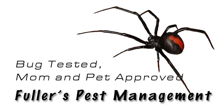 Insect and rodent pest control Roseburg Oregon